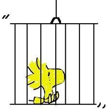 prigione[7]